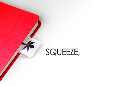 squeeze.png